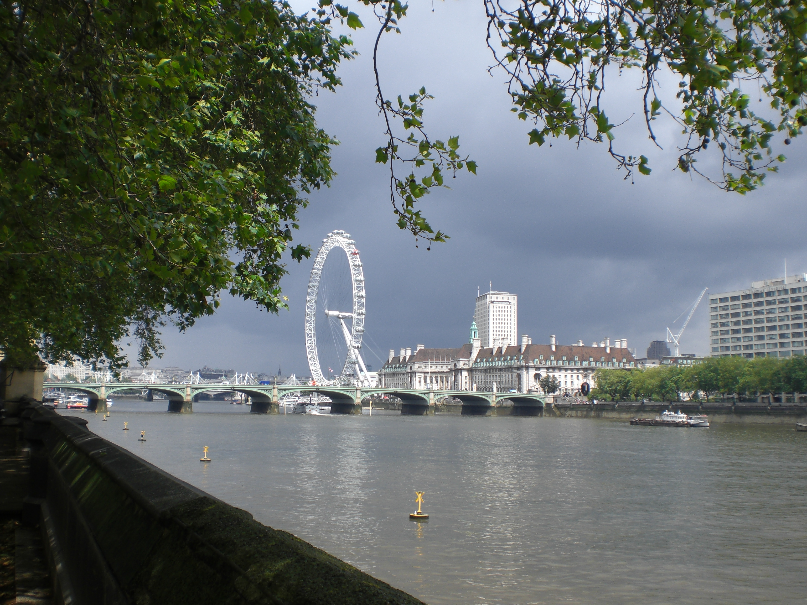London eye from Westminster