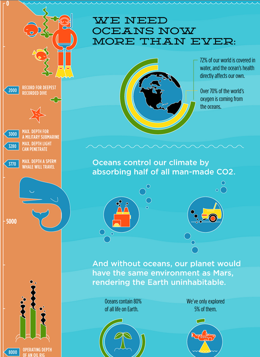 Infographics about the Ocean